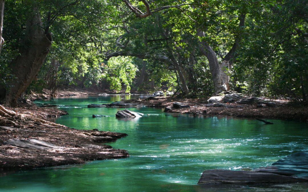 Kayaking in the far east